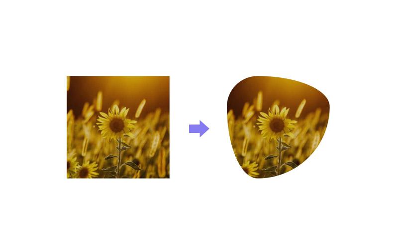 blob shape image border